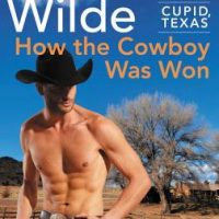 Cute but Needs Work: How the Cowboy Was Won by Lori Wilde
