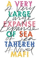 Adorable and Emotional: A Very Large Expanse of Sea by Tahereh Mafi